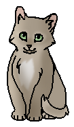 Дроздовичок (котёнок)