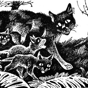 Рыжинка ведёт котят в Грозовое племя Длинные тени.jpg