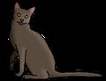 Пыльнозвёзд (звёздный предок)