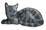 Поющий Камень (кот древнего горного клана)