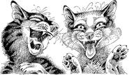 Борис и Вишенка смеются над Небосклоном