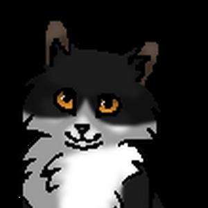 Быстролап (котёнок).png