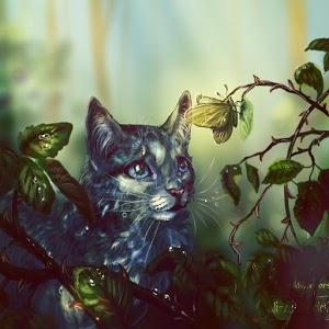 Коты-Воители. Герои книг