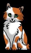 Стебелечек (котенок)