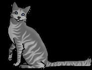Дубоход (звёздный предок)