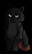 Лисонька (котёнок)