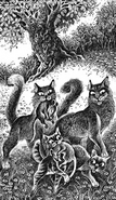 Вишня Крот Огнелапка и Ольхолап Приключения Ольхолапа