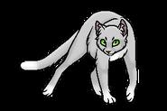 Иглохвостка (бродяга)