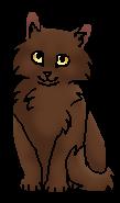 Порхающая Птичка (котёнок)