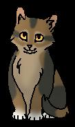 Грязнуля (котёнок)