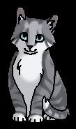 Перчинка (котёнок)