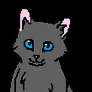 Серенький (котёнок).png