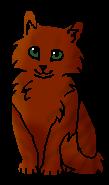 Морковка (котенок)