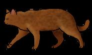 Жабчик (бродяга)