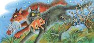 Ледозвёзд Несёт котят Меднохвостки