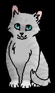 Растрёпушка (котёнок)