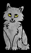 Галечник (котёнок)