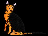 Саламандра (звёздный предок)