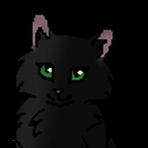 Папоротник (котёнок) .png