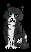 Кувшинка (котёнок)
