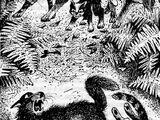Вторжение в лагерь племени Ветра (Месть Звёздного Луча)