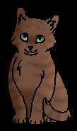 Вихрастик (котёнок)