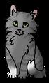 Волчишка (котёнок)
