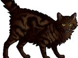 Pantherfang