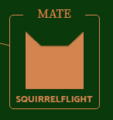 Squirrelflight.Icon2