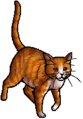 Squirrelflight.queen.alt2