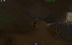 WindClan medicine den.screenshot