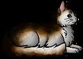 Ivytail (ShC).elder