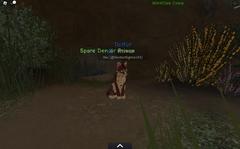 WindClan spare den.screenshot
