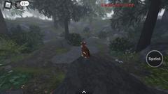 ShadowClan camp.screenshot