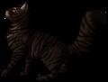 Tigerstar (AVoS).deputy