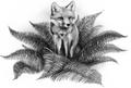 Fox.FG-3