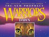 Dawn (book)