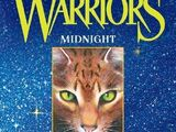 Midnight (book)