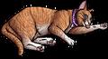 Violet (KP).kittypet
