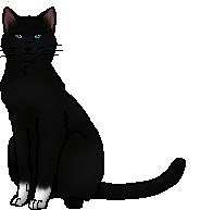 Birdpaw.charart.png