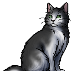 RiverClan cats