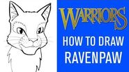 How To Draw Ravenpaw 🐾 With James L