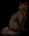 Timberfur.warrior