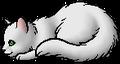 Sagenose.kit