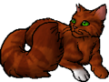 Squirrelflight.star