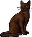 Applefur (OotS).warrior