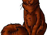 ZampadiScoiattolo