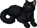 Minor characters/Tigerheart's Shadow