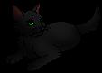 Nightkit (TC)