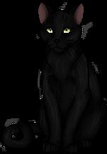Raven Pelt